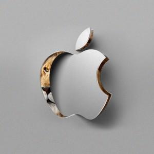 Apple OS X Lion 10.7 - viele Neuigkeiten